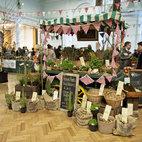 RHS Great London Plant Fair