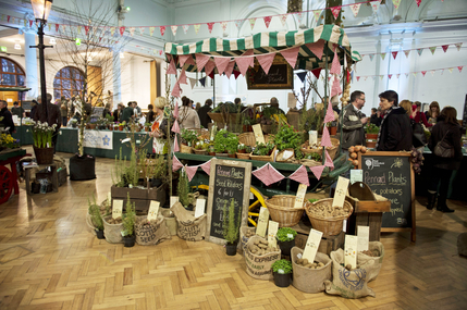RHS Great London Plant Fair