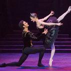 English National Ballet: Swan Lake
