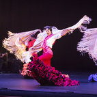 Flamenco Festival London