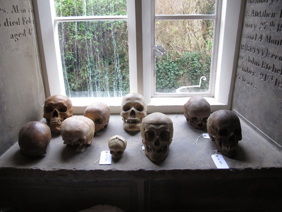 Magnificent Obsessions: The Artist as Collector - Skulls on display in Damien Hirst's home. Courtesy Murderme Collection