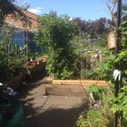 St Quintin Community Kitchen Garden