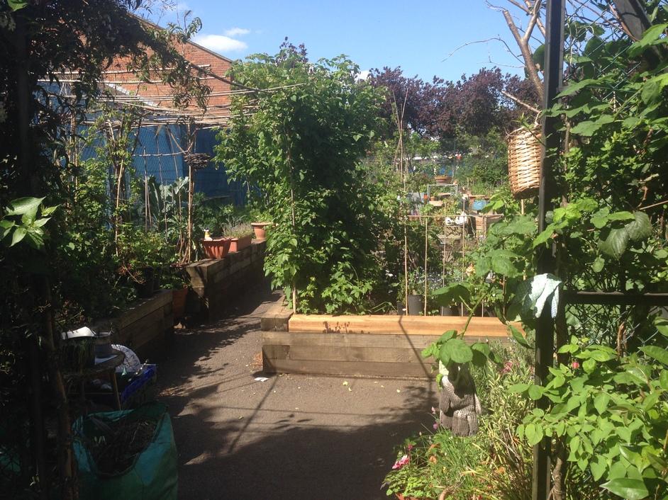 St Quintin Community Kitchen Garden In London Nearby Hotels Shops