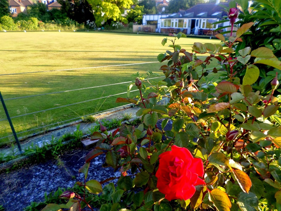 West London Bowling Club - West London Bowling Club, Ladbroke Grove, W10 6PL