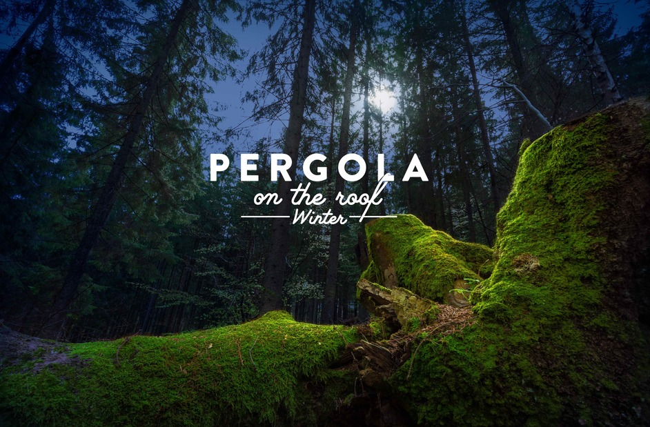 Pergola on the Roof Winter