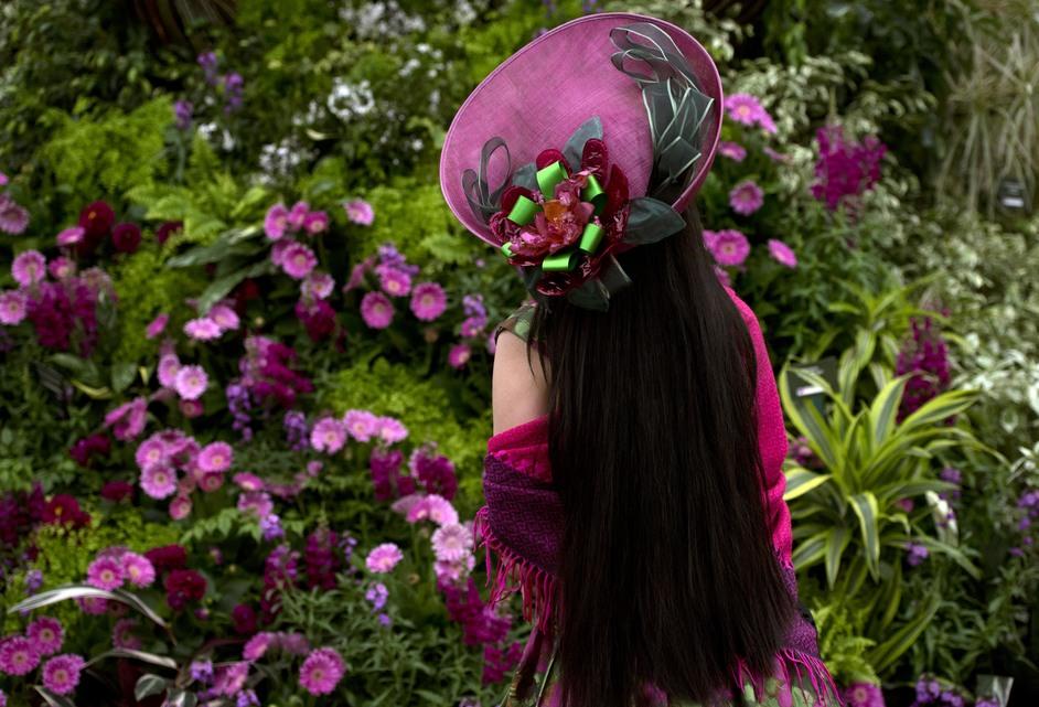 RHS Chelsea Flower Show - Photo: RHS / Hannah McKay
