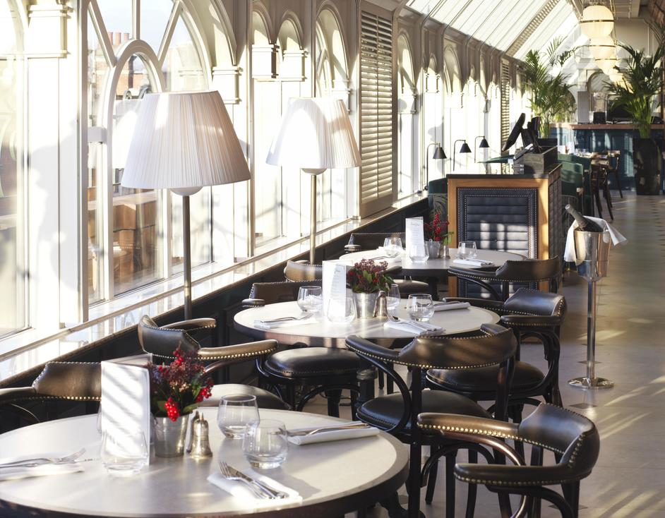 Galvin Demoiselle at The Conservatory