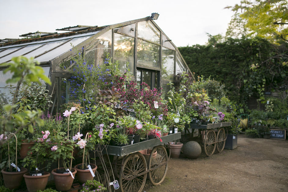 Petersham Nurseries Cafe and Teahouse - Photo: Marimo Images www.marimoimages