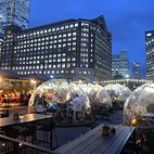 Igloos at The Sipping Room