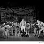 Viviana Durante Company - Kenneth MacMillan: Steps Back in Time