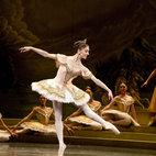 The Royal Ballet: Sylvia