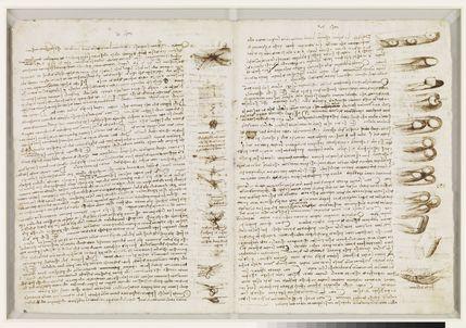 Leonardo da Vinci: A Mind in Motion