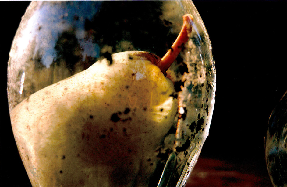 Tacita Dean: Still Life - Tacita Dean (born 1965), Prisoner Pair, 2008 © Courtesy the artist, Frith Street Gallery, London and Marian Goodman Gallery, New York/Paris