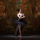 English National Ballet: My First Ballet: Swan Lake