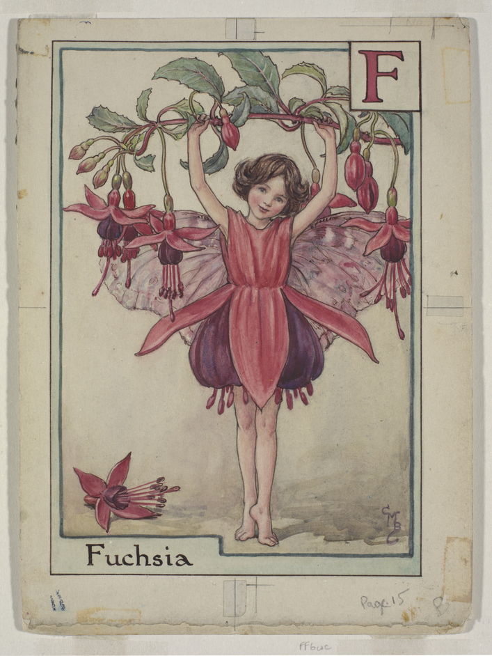 Flower Fairies: Botanical Magic - The Fuchsia Fairy © The Estate of Cicely Mary Barker, 1934
