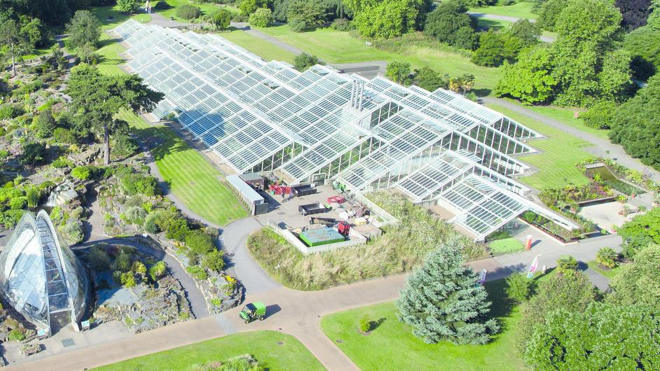 Kew Gardens (Royal Botanic Gardens) - Kew, Princess of Wales Conservatory