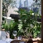 Selfridges' Rooftop: San Carlo