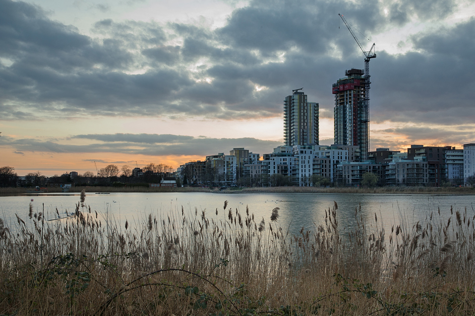 Woodberry Wetlands - photo: Penny Dixie