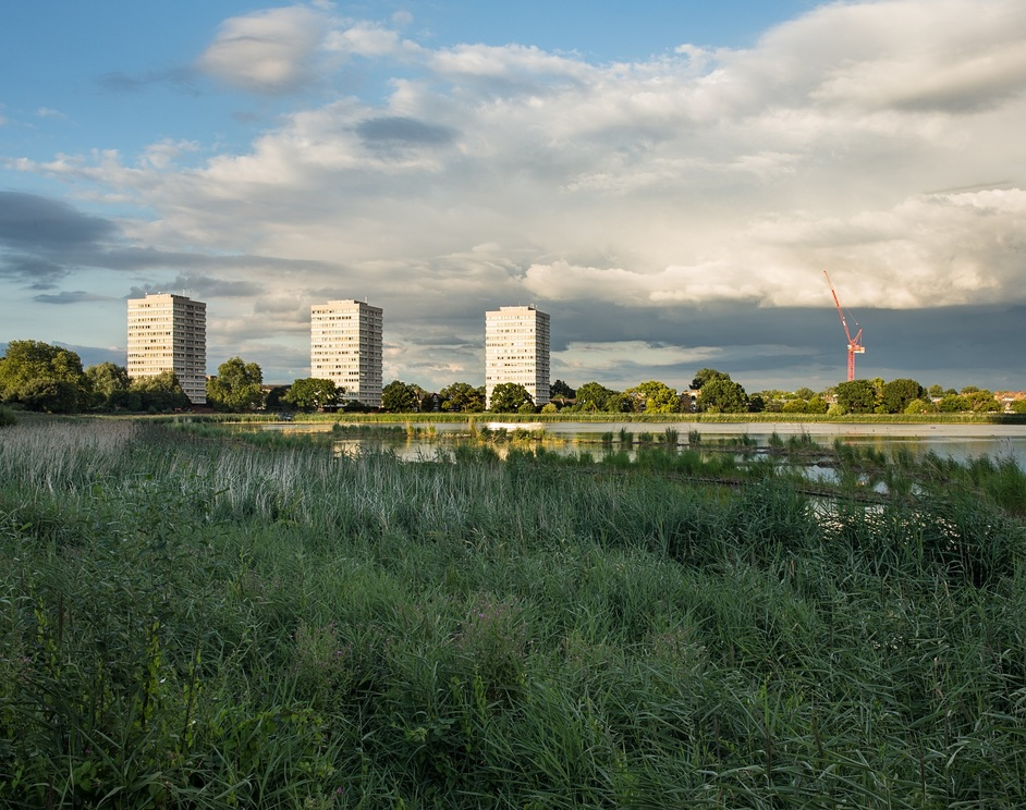 Woodberry Wetlands - Woodberry Wetlands, photo: Penny Dixie