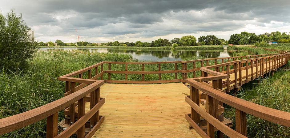 Woodberry Wetlands - Woodberry Wetlands boardwalk, photo: Penny Dixie