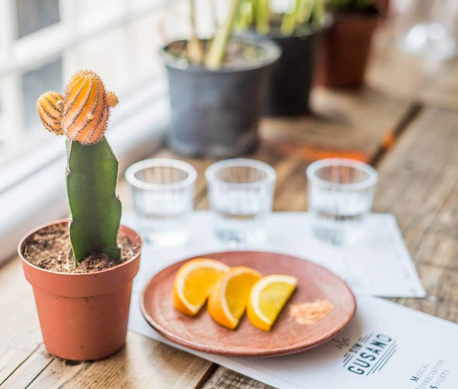 London Mezcal Week - photo: Sin Gusano