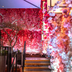 Hanami Terrace: Nobu Hotel London Shoreditch
