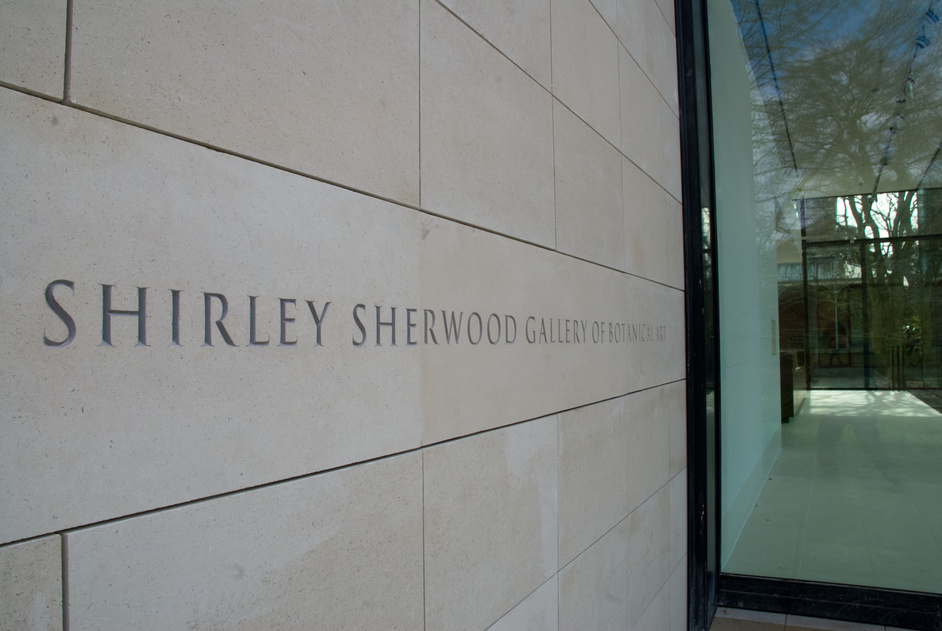 Shirley Sherwood Gallery - The Shirley Sherwood Gallery of Botanical Art © RBG Kew