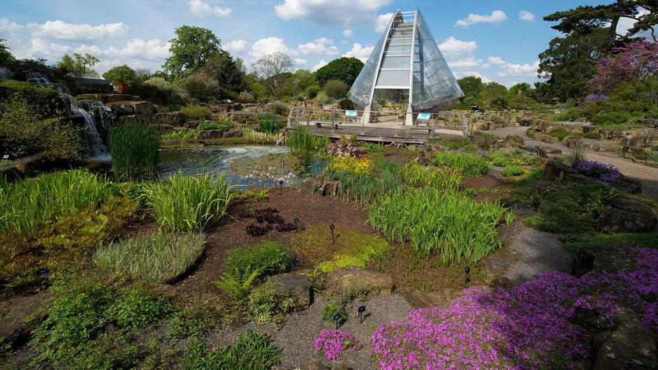 Kew Gardens (Royal Botanic Gardens) - Alpine Davies Glasshouse © RBG Kew
