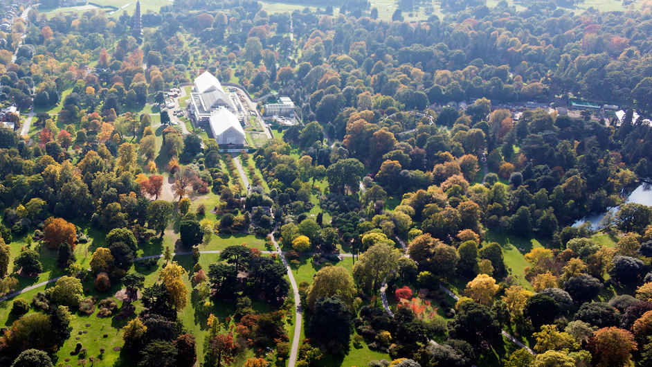 Kew Gardens (Royal Botanic Gardens) - Ariel view of the arboretum © RBG Kew