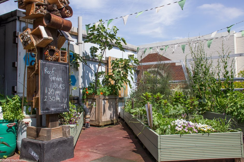 Open Garden Squares Weekend - Providence Row Rooftop Garden © Candy Blackham
