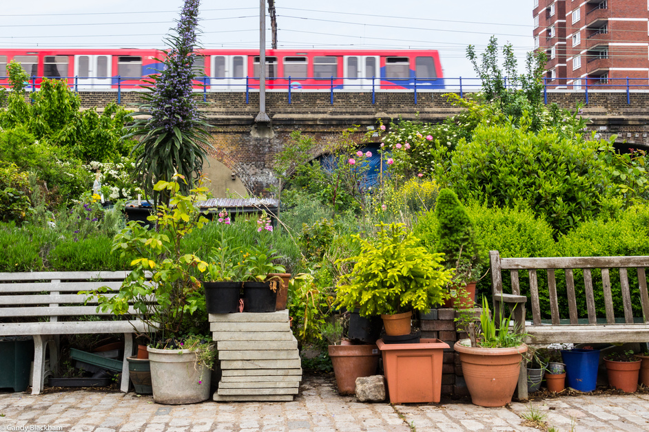 Open Garden Squares Weekend - Cable Street Community Gardens © Candy Blackham
