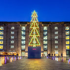 King's Cross Christmas Tree