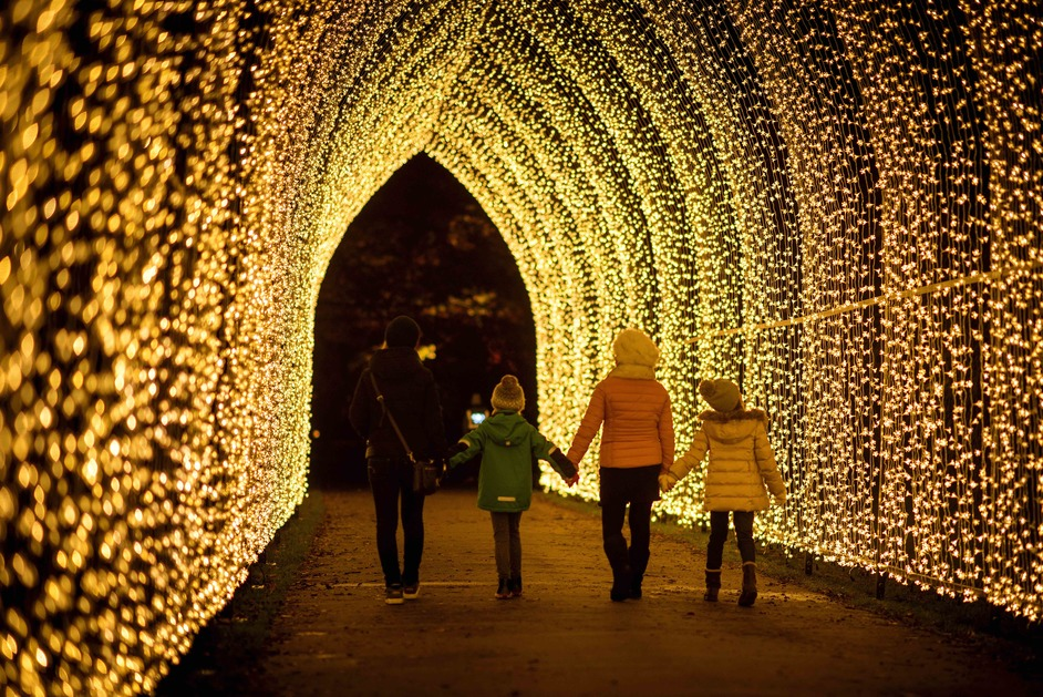Christmas at Kew - Cathedral of Light. Photo: Jeff Eden RBG Kew