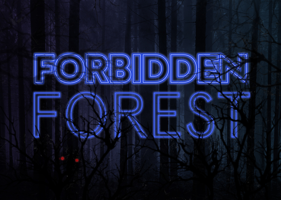 Forbidden Forest Party at W London
