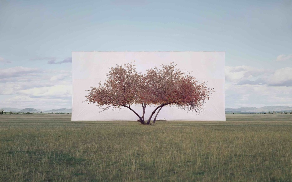 Among the Trees - Myoung Ho Lee, Tree... #2, 2012, ink on Paper © the artist 2020. Courtesy Myoung Ho Lee and Gallery Hyundai